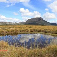 The Overland Track Tasmania – A dream revisited